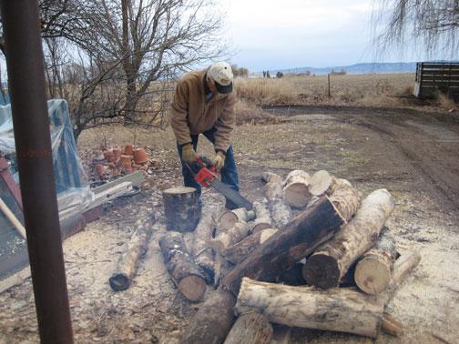 cutting-firewood-2008.jpg