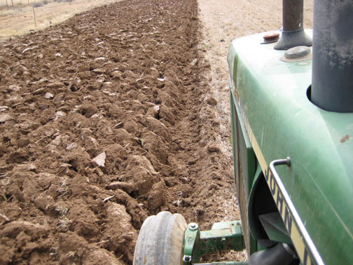 plowing-the-hay-field.jpg