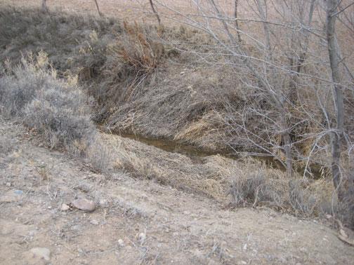 drain-ditch