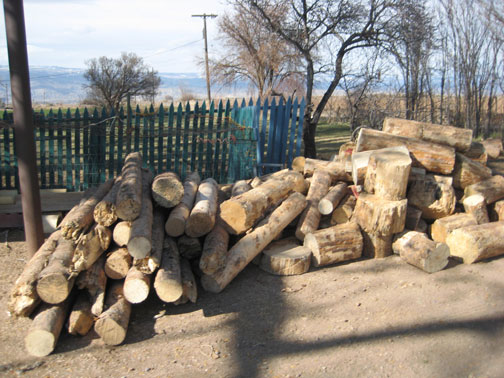 wood-for-next-winter-0021