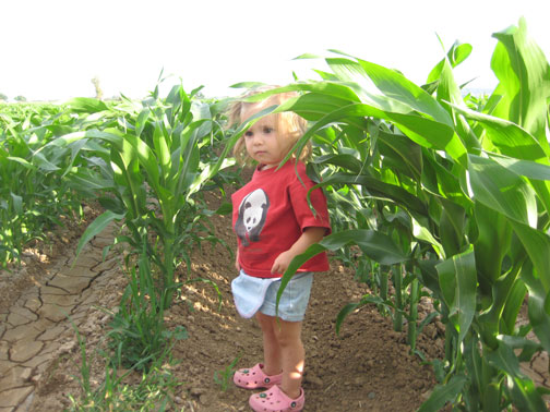 Tally-and-the-Corn-002