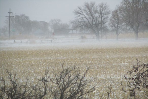 Winter-Storm-4