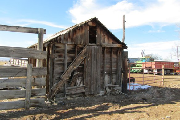 Grain-Shed-2