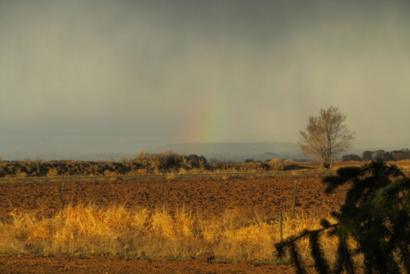 Rainbow-March-2013
