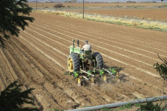 Planting-Corn