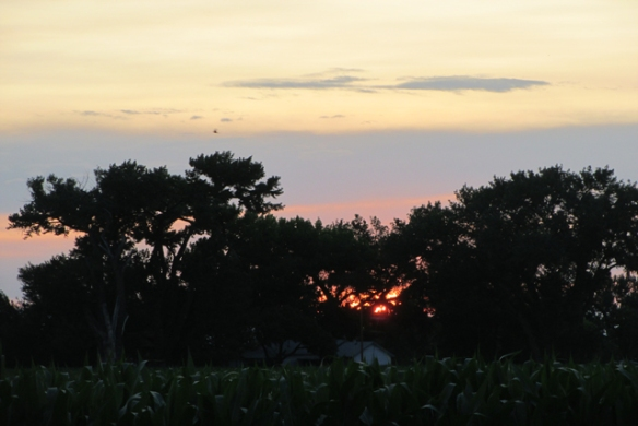The-sun-sets