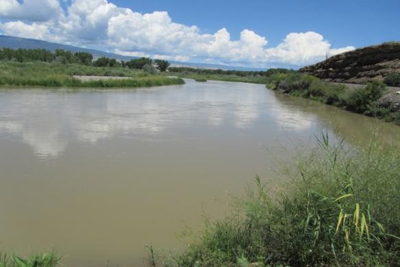 Gunnison-River