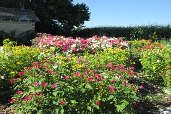 Sundail-garden