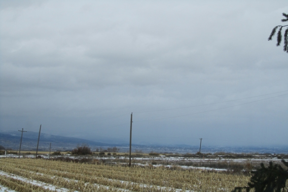 Grand-Mesa-Snow