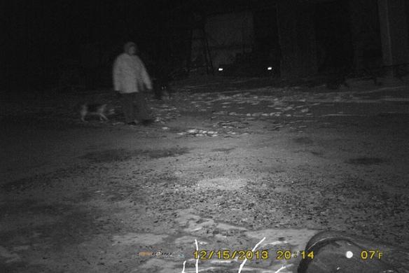 Night-Walk-2