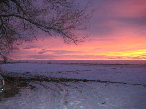 red-winter-sun