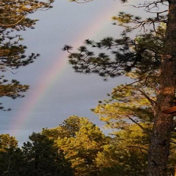 Elaine's-Rainbow-3