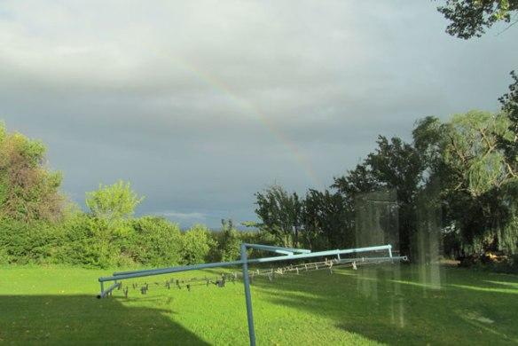 Rainbow-6
