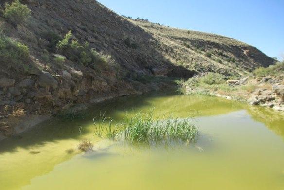 Slime-Water