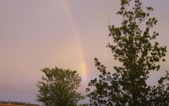 Rainbow for me