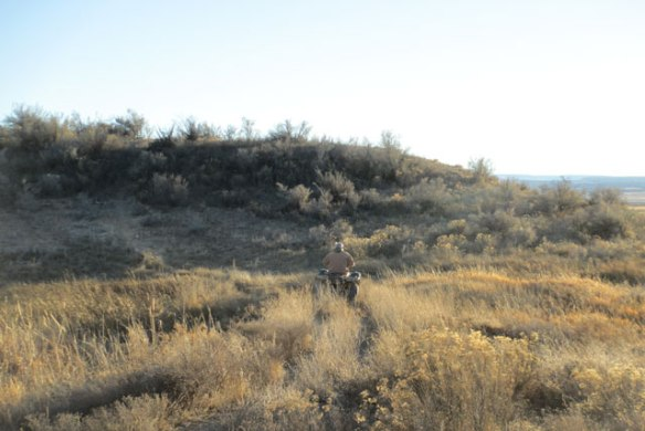 Sage-Brush-Hill