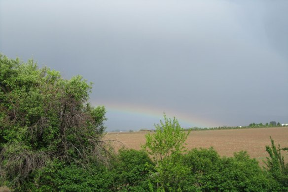 A-welcome-Rainbow-1
