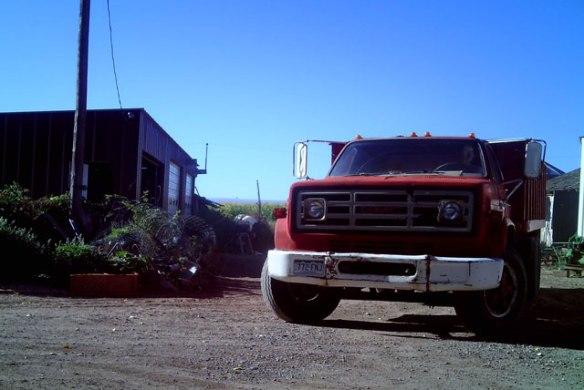 Grain-Truck-1