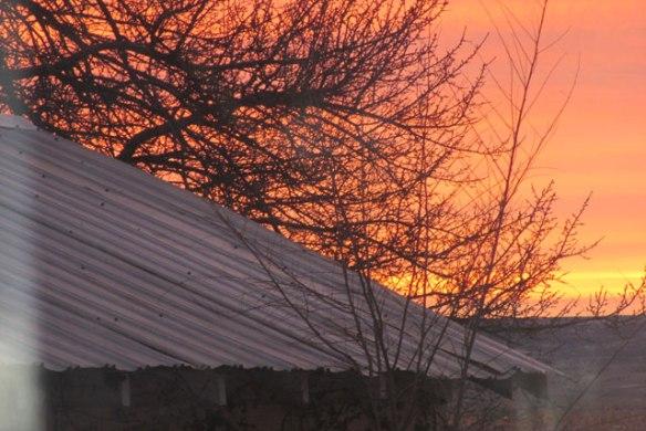 Winter-sun-2