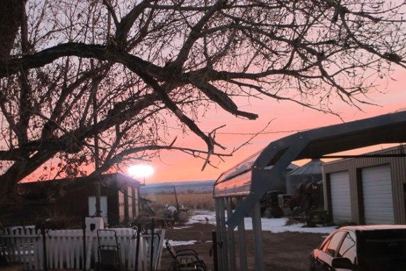 Winter-sun1