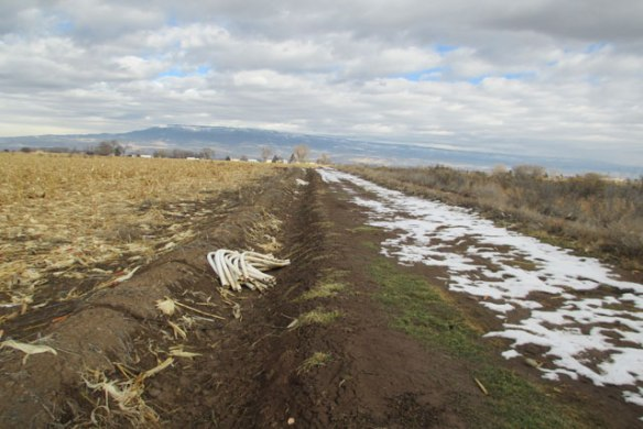 Ditches-1