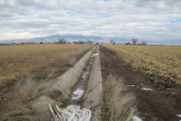 Ditches-4