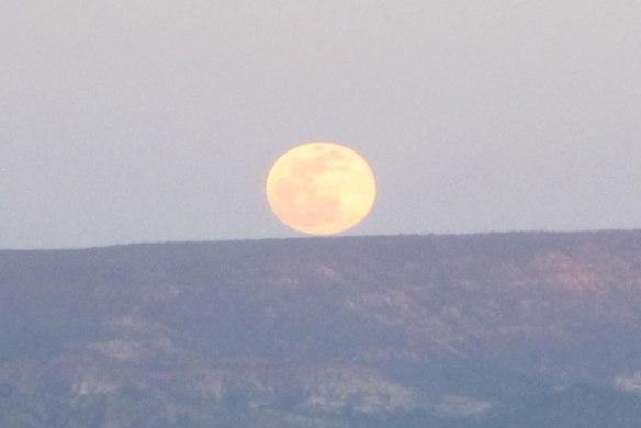 April-Moon-2