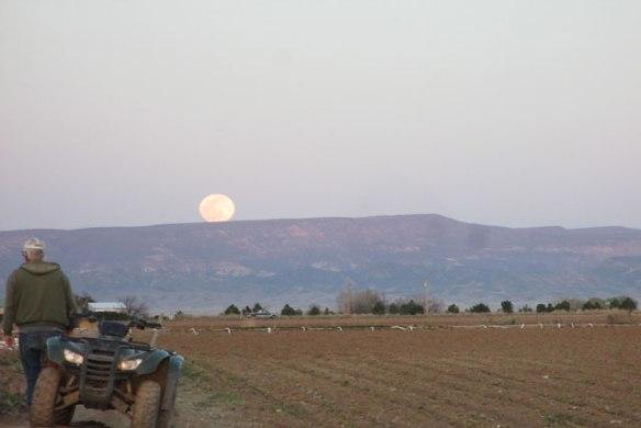 April-Moon-3