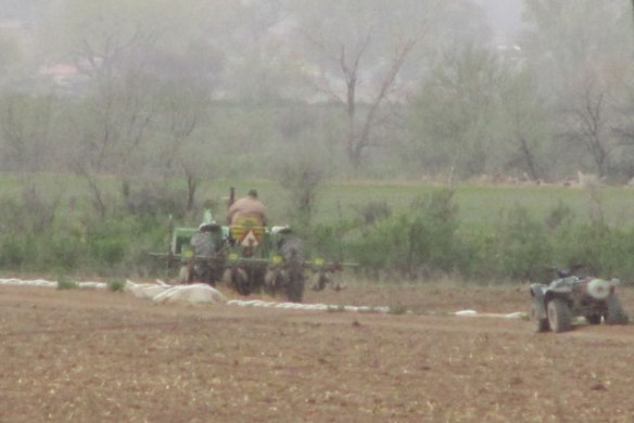 Farming-in-the-rain-1