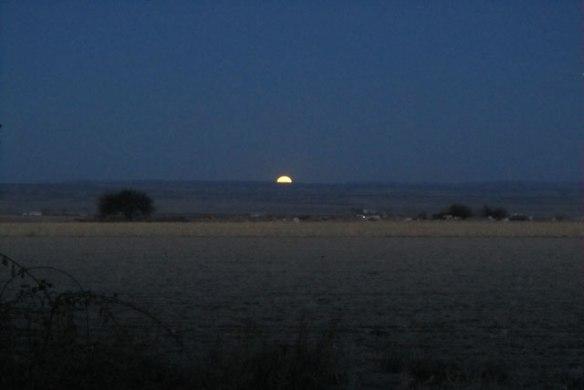 Field-Moon