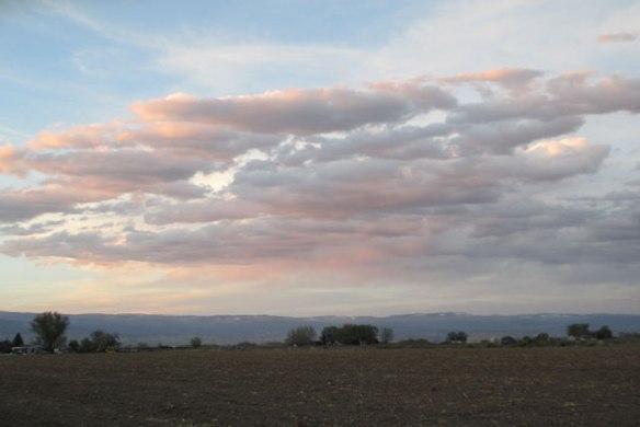 Pink-Clouds-2