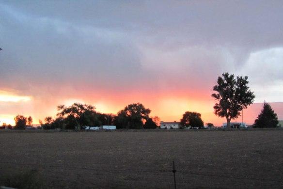Rain-in-the-setting-sun-1
