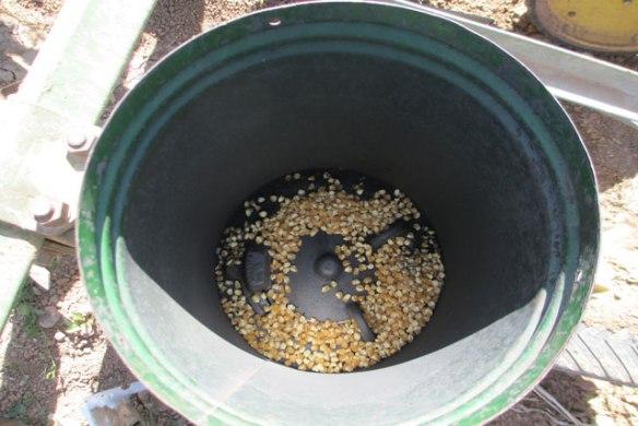 Planting-Sweet-Corn