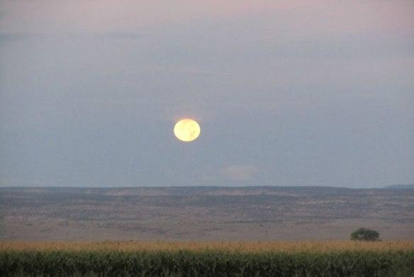 August-Full-Moon-2