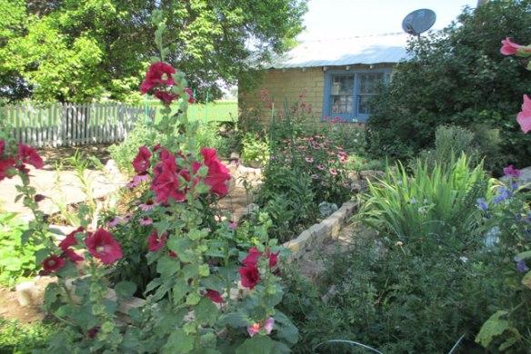 Garden-1