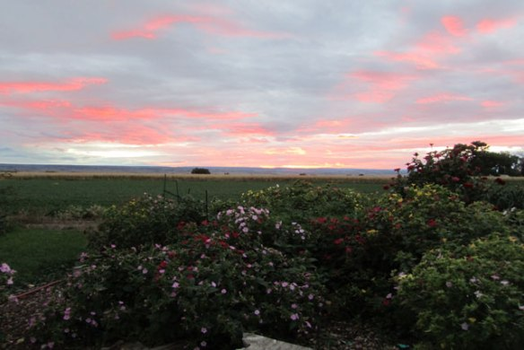 fall-sunset-001