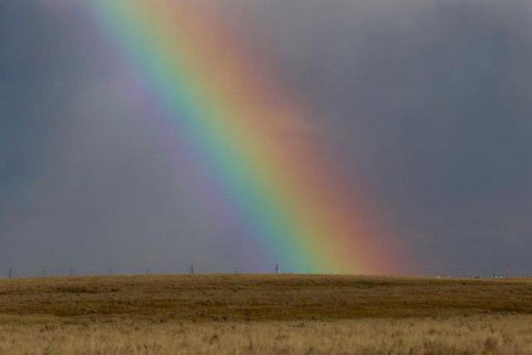 lindas-prairie-rainbow