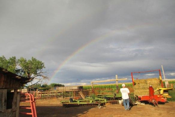 Love-Rainbows-3