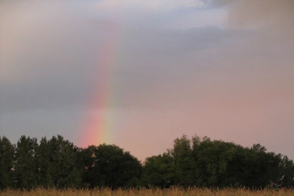 Rainbows-in-the-sky-1