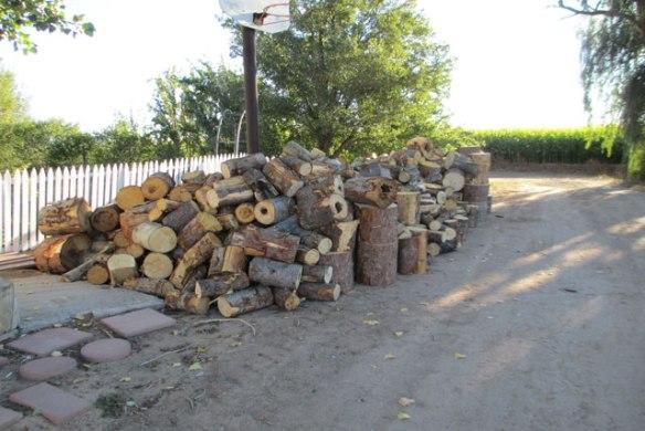 wood-pile-3