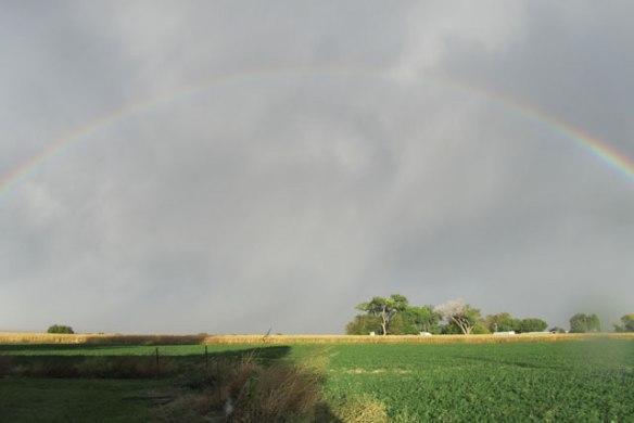 i-love-rainbows-012