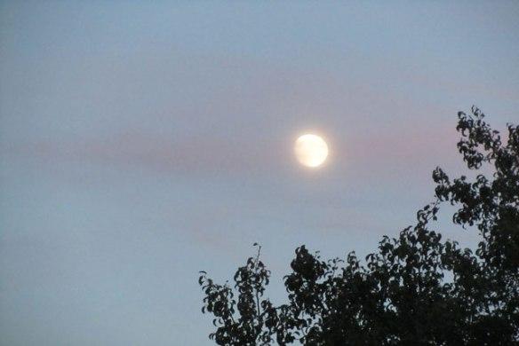 october-moon-001