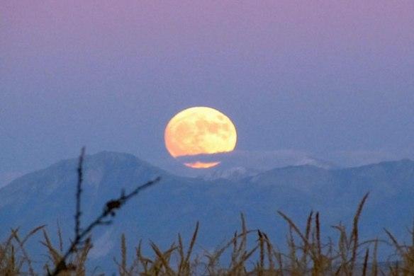 novembers-super-moon-011