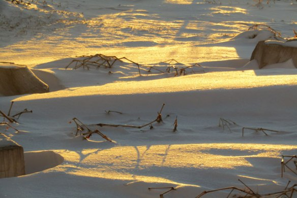 ice-and-shadows-011
