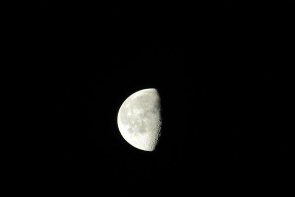 last-quarter-moon-004