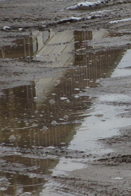 rain-puddles