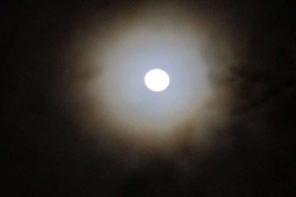 ring-around-the-moon
