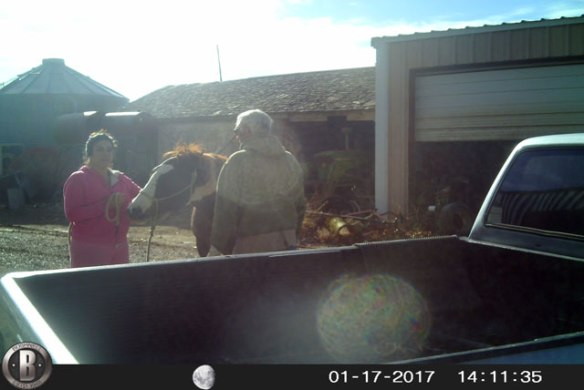 romeo-visits