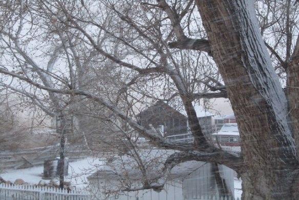 snow-storm-003